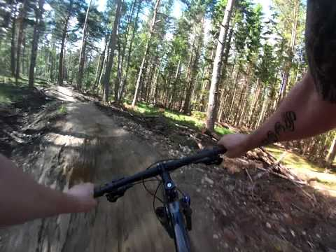 Tarland Trails - Scott riding the Red and Blue tracks.