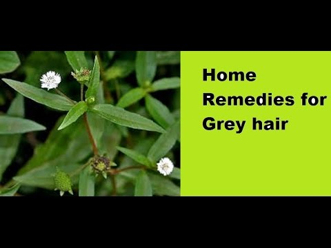 Home Remedies for Grey Hairs