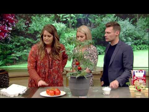Gardening Hacks with Monica Mangin