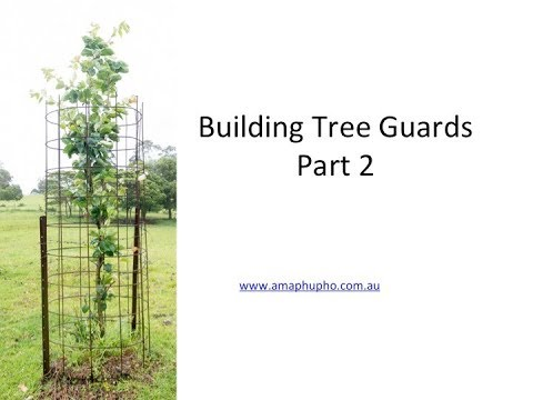 Tree Guards you can build yourself that last years