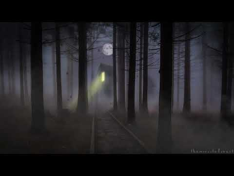 🎧 Spooky Forest Ambience   8 HOURS   Relaxing ASMR Soundscape