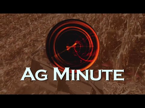 Ag Minute #895 Cold Spring (Air Date 4-15-18)