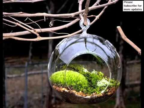 Diy Terrarium Holiday Glass | Picture Collection Of Jar Vase For Christmas Decoration | Glass Craft