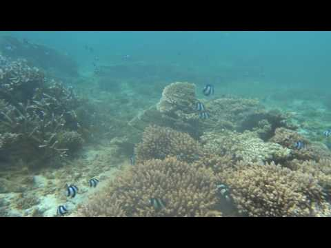 Sony Action Camera  FDR - X300, Underwater in Tamassa hotell, Mauritius