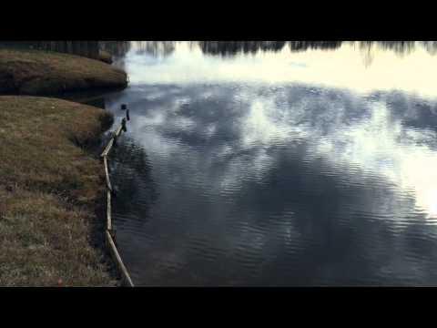 Pond Management for Muskrat & Beaver