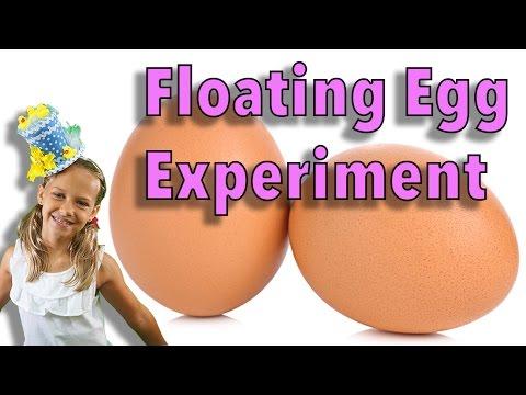 Floating egg / saltwater density test
