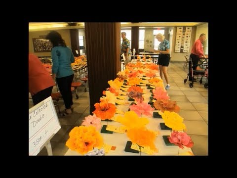 MBAC-2018 American Hibiscus Society Show