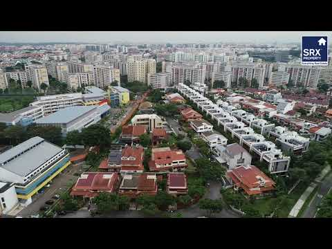 370 Lorong Chuan on X-Drone
