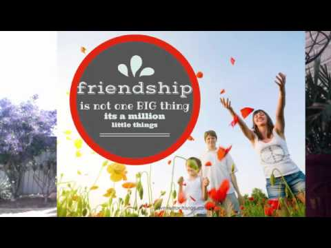 The Importance of Friendships and Friendship Circles.
