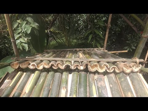 Primitive Technology: Bamboo roof shelter