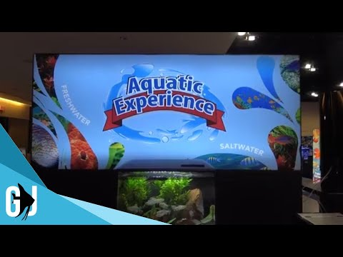 #530: What to Expect from The Aquatic Experience 2018 - Update Monday