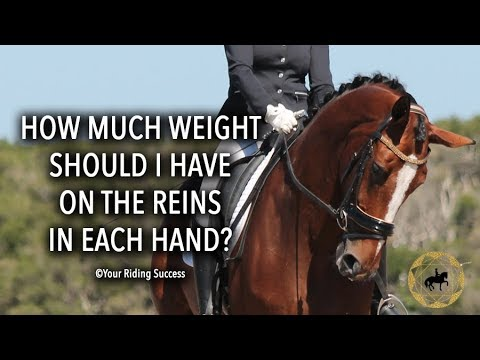 How Much Weight On The Reins Should I Have In Each Hand ? - Dressage Mastery TV Ep214