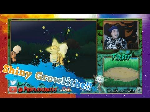 BEAST BALL SHINY GROWLITHE REACTION!! Pokémon Sun and Moon Shiny #2