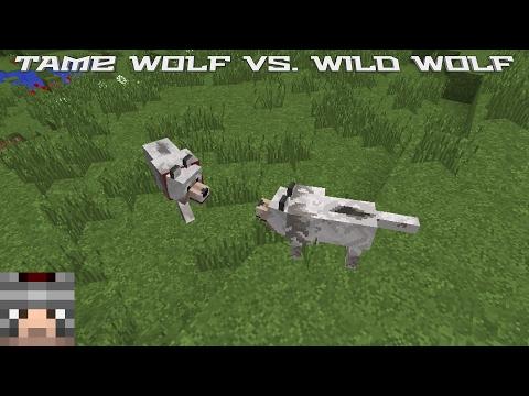 Minecraft: Tame Wolf vs. Wild Wolf