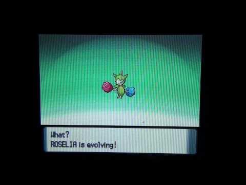 Pokemon Pearl/Diamond How To Evolve Roselia (HD)