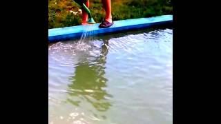 Заливаем в #бассейн#перекись#водорода Тольятти до и после