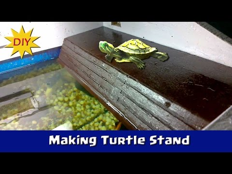 Making a Turtle Stand for my Turtle from Scratch - DIY