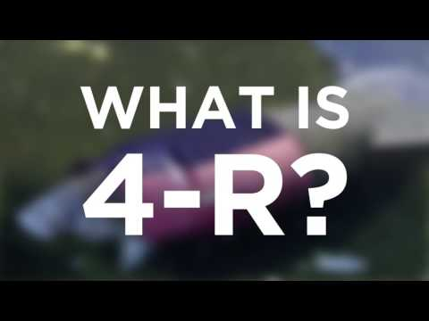 What's SeaWorld Abu Dhabi's R4 Center All About?   SeaWorld®