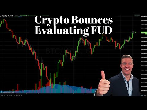 Crypto Bounces, Evaluating the FUD Behind Us