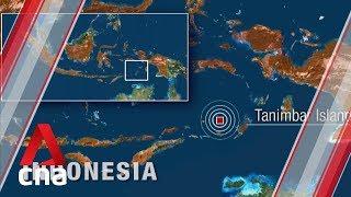 Download 7.3-magnitude earthquake hits Indonesia's Tanimbar islands in Banda Sea Video