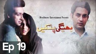 Bhegi Palkain - Episode 19   ATV