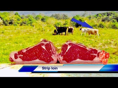 Como cortar un  New York strip loin ! Como cortar un shell steak ! Los mejores cortes de carne de ny