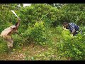 Download Video Download Chanson yacouba Tonkpi direct 3GP MP4 FLV