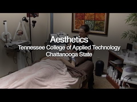 ChattState's TCAT-Aesthetics