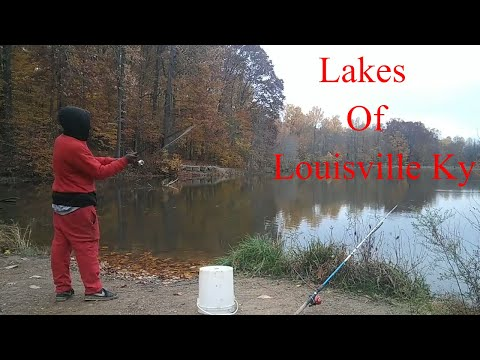 Lakes Of Louisville Best Fishing Lakes In Louisville Kentucky (The Ghetto Angler) Fishing Report