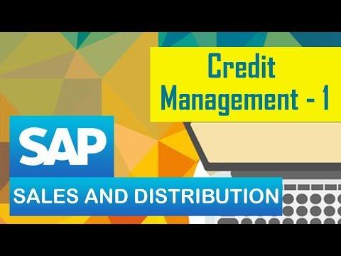 SAP SD | Credit Management | Definition | Steps in customizing Credit management | Part 01