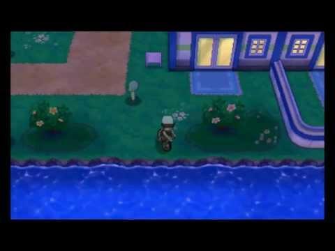 Pokemon Omega Ruby/Alpha Sapphire - Metal Coat Location