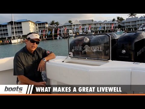 Boating Tips: What Makes a Great Livewell