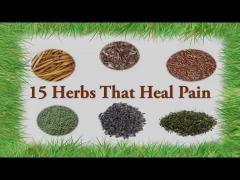 15 Herbs For Pain Relief - Neck Pain, Back Pain, Arthritis Pain etc.