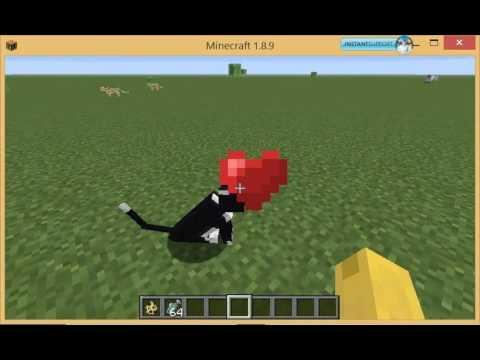 Minecraft Tutorials: How to tame an Ocelot/Cat