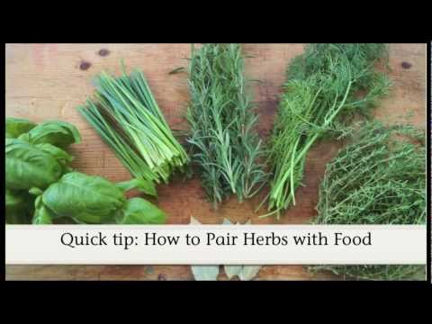 Quick tip: How to Pair Herbs with Food