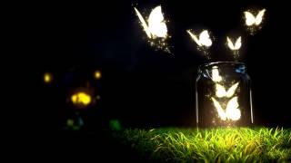 Ellie Goulding - Lights (Bassnectar Remix) HD