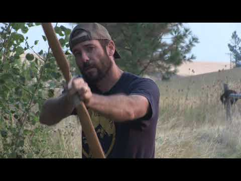 Why Cant a Traditional Bow, longbow, recurve, or selfbow?