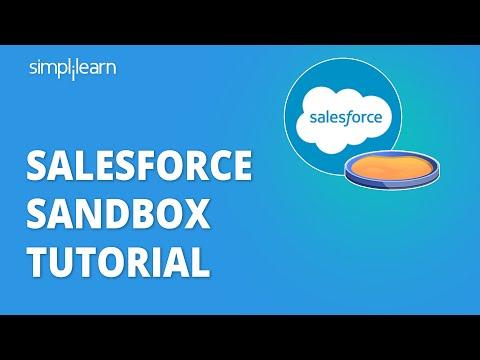 Salesforce Sandbox Tutorial | Salesforce Training Videos For Beginners | Simplilearn