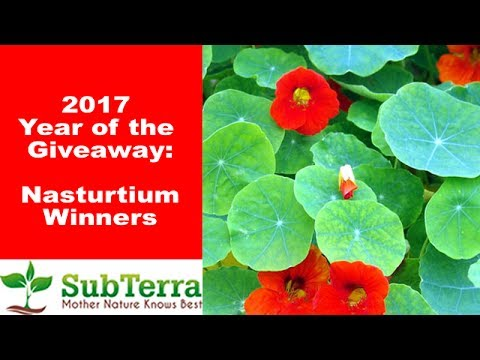 May Nasturtium Winners * Giveaway *
