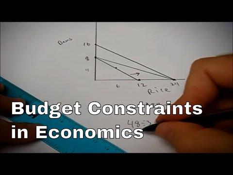 Solving a budget constraint problem in economics