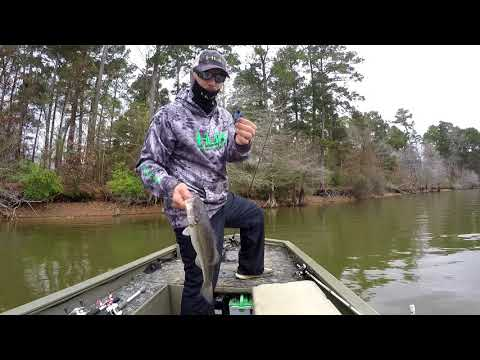 Toledo Bend Fishing Here & There
