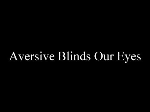 Proverb: Aversive Blinds Our Eyes (epilepsy warning)
