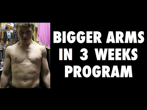 Bigger Arms In 3 Weeks! - Workout No. 2