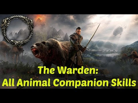 *NEW* ESO: The Warden: ALL Animal Companion Skills, Abilities, and Morphs
