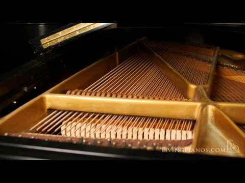 Used Chickering Grand Piano for Sale - Online Piano Store - Living Pianos