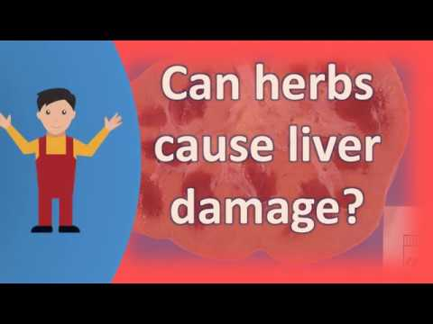 Can herbs cause liver damage ?