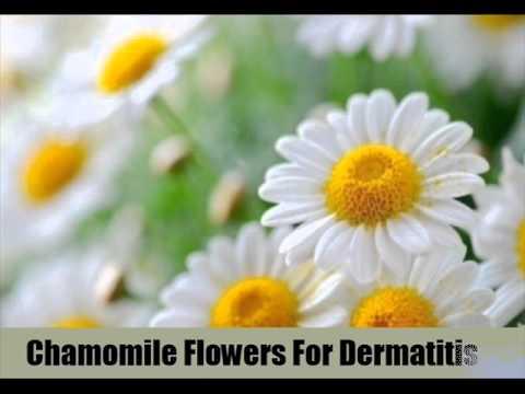 7 Best Natural Cures For Dermatitis