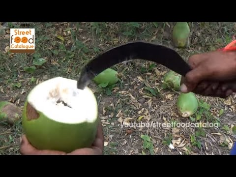 My Village Coconut Water  - Village Style - Coconut Water Benefits - Coconut Oil - Indian Recipes