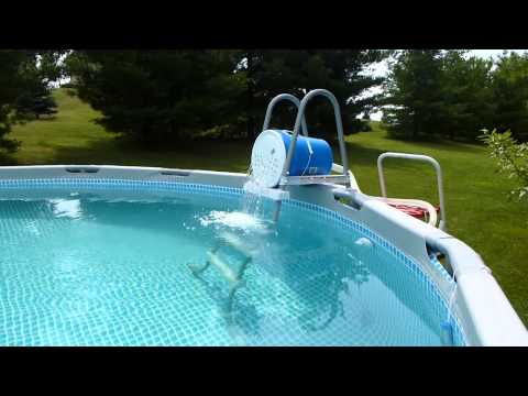 How to get iron out of pool water. Effective and cheap. Intex pool.