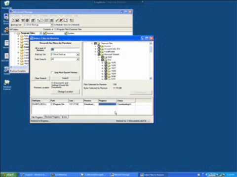 Mirrored Storage Restore Files